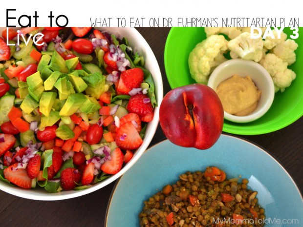 Eat to Live - What I Ate on Day 3 // MyMommaToldMe.com