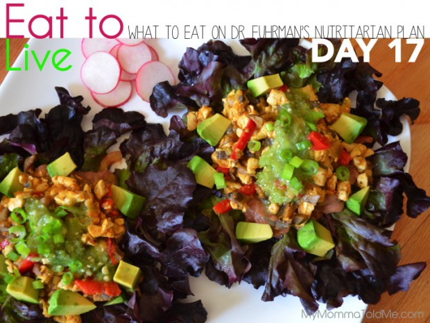 Day 17 What to eat on Dr Fuhrman Eat to Live Plan