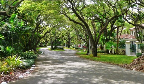best places to visit in Miami coral gables tree lined streets