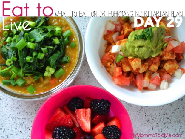 Day 29 Eat to Live Dr Fuhrmans 6 week plan