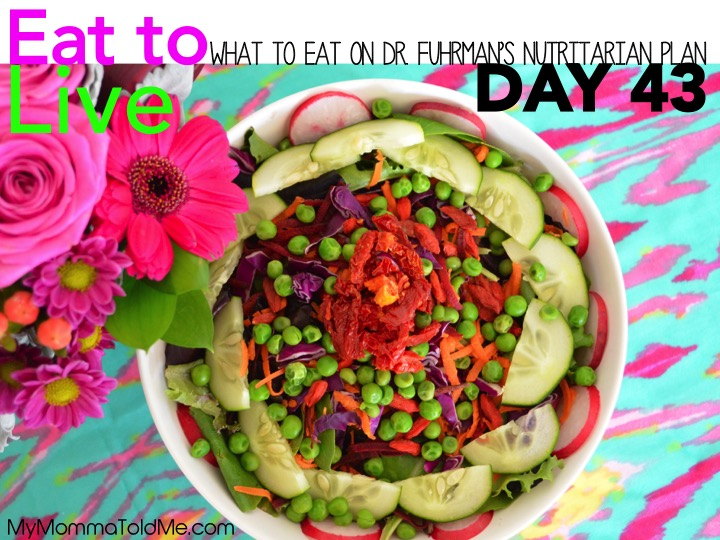Dr Fuhrman Eat to Live Nutritarian Plan Day 43 Daily Diet Log