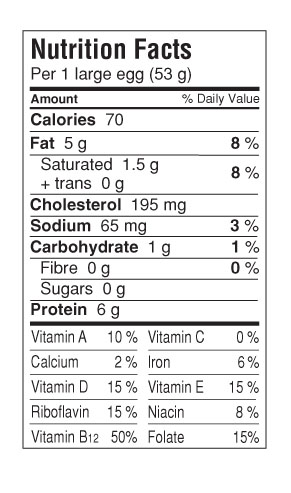 egg nutrition facts how much protein in one egg